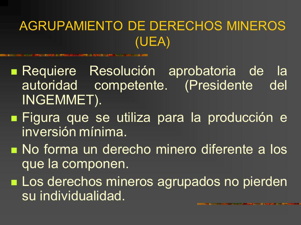 AGRUPAMIENTO DE DERECHOS MINEROS (UEA)