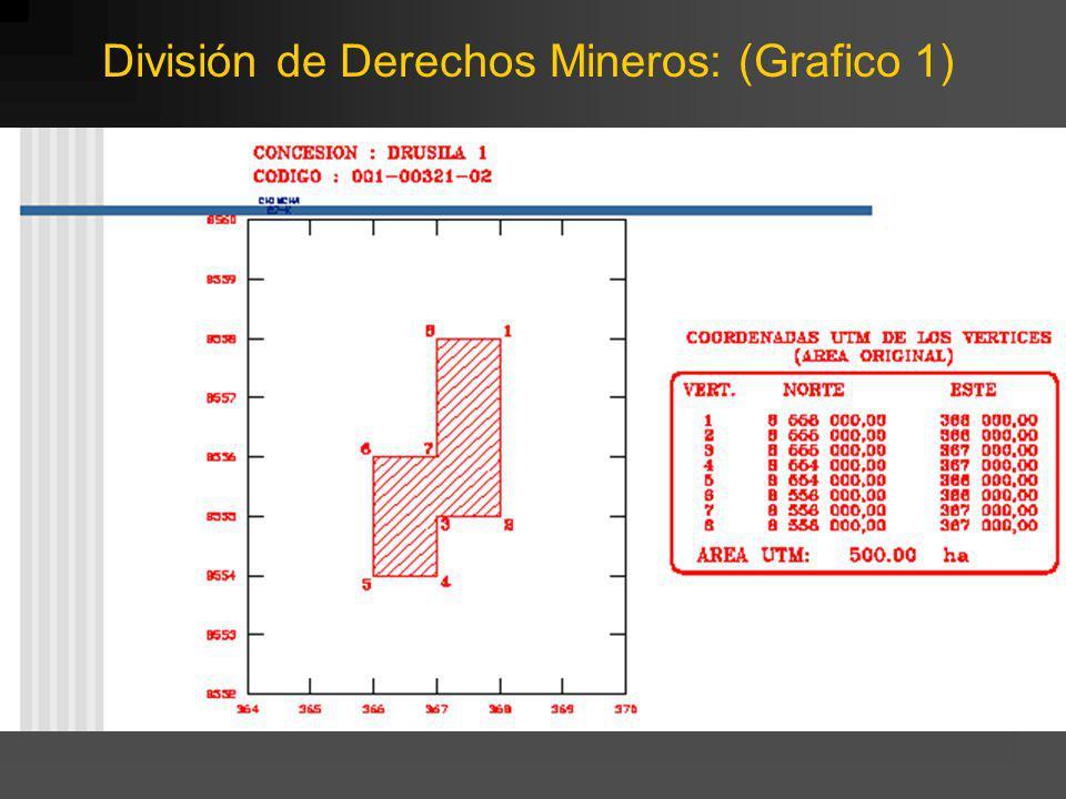 División de Derechos Mineros: (Grafico 1)