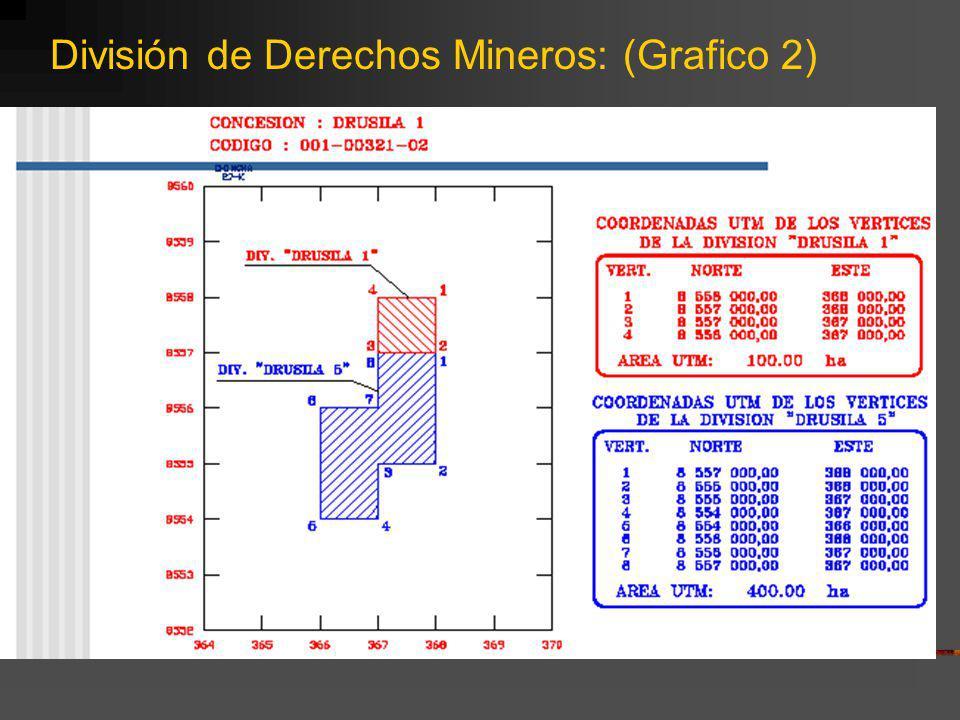 División de Derechos Mineros: (Grafico 2)