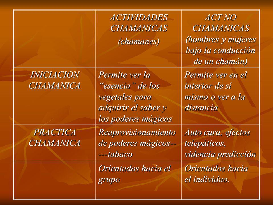 ACTIVIDADES CHAMANICAS (chamanes)