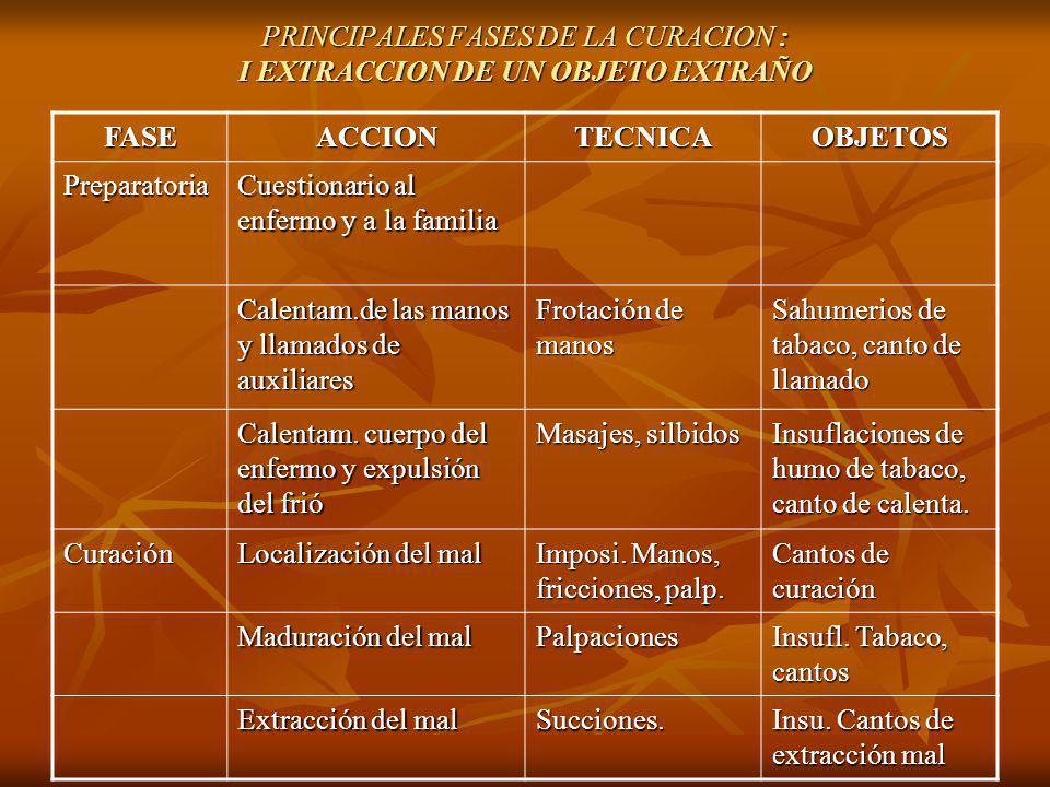 PRINCIPALES FASES DE LA CURACION : I EXTRACCION DE UN OBJETO EXTRAÑO