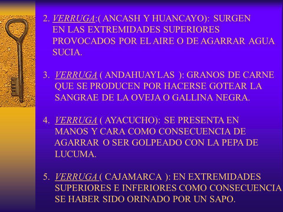 2. VERRUGA:( ANCASH Y HUANCAYO): SURGEN