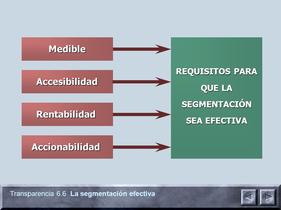 REQUISITOS PARA QUE LA SEGMENTACIÓN SEA EFECTIVA