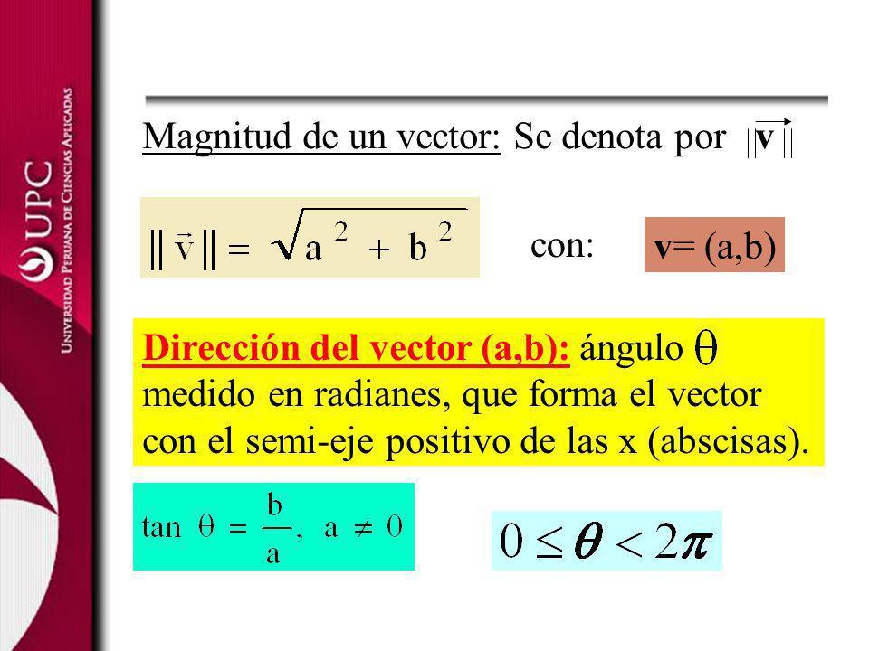 Magnitud de un vector: Se denota por v