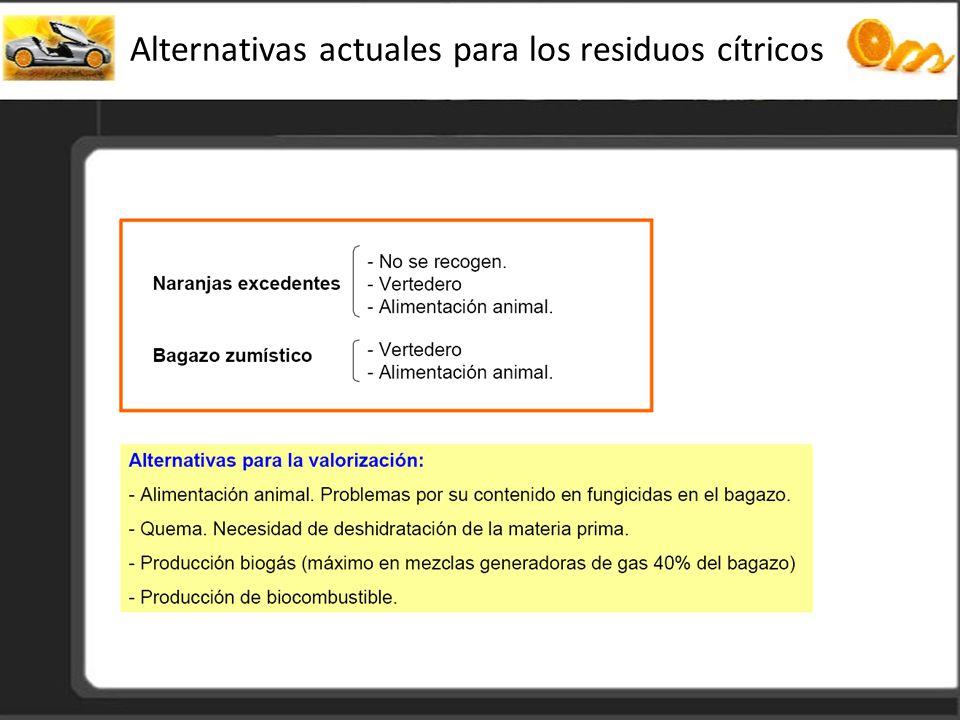 Alternativas actuales para los residuos cítricos