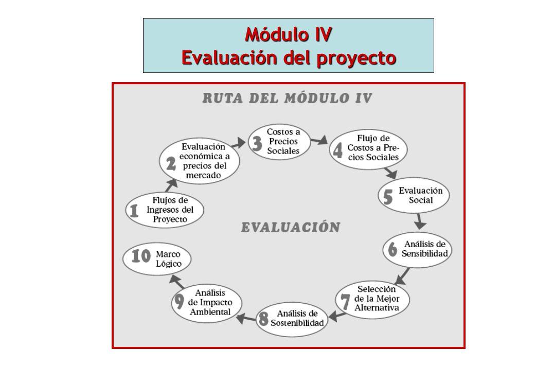 Módulo IV Evaluación del proyecto