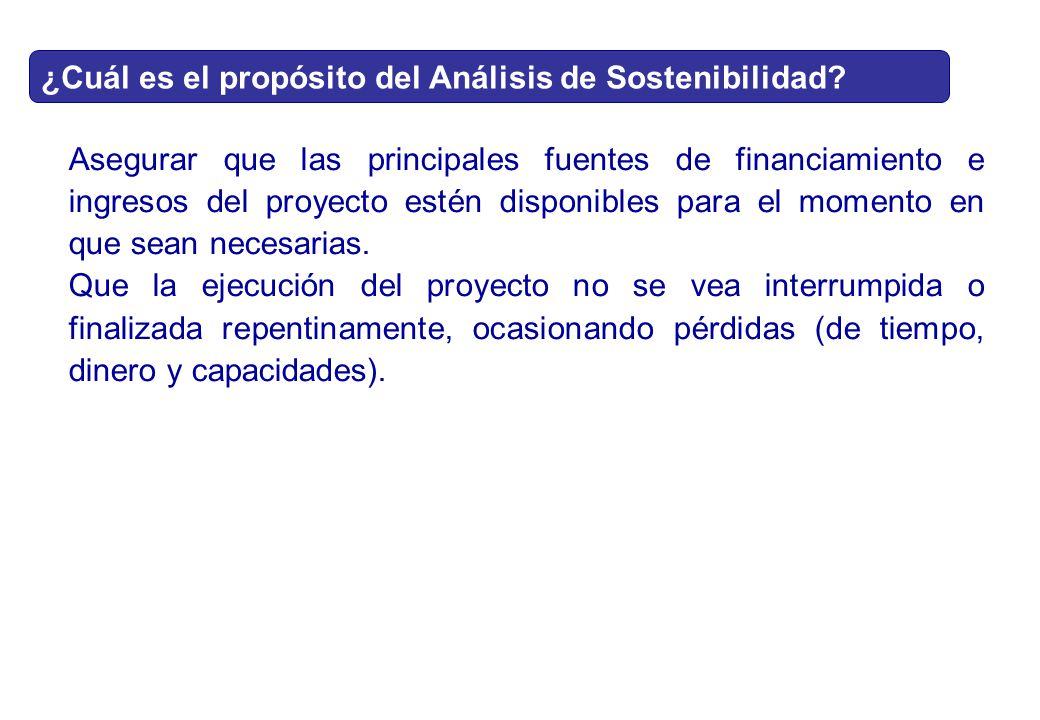 ¿Cuál es el propósito del Análisis de Sostenibilidad