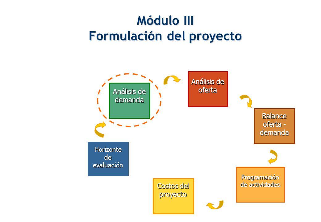 Módulo III Formulación del proyecto
