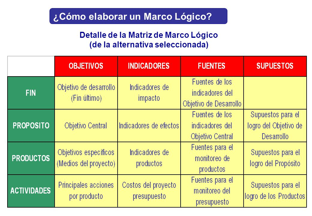 Detalle de la Matriz de Marco Lógico (de la alternativa seleccionada)