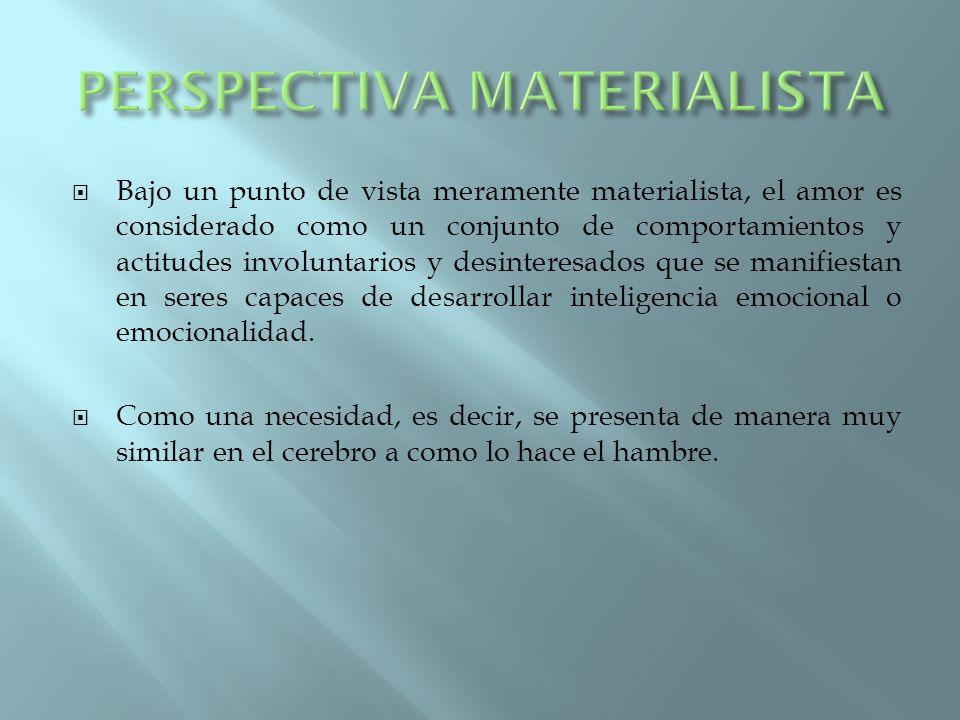 PERSPECTIVA MATERIALISTA