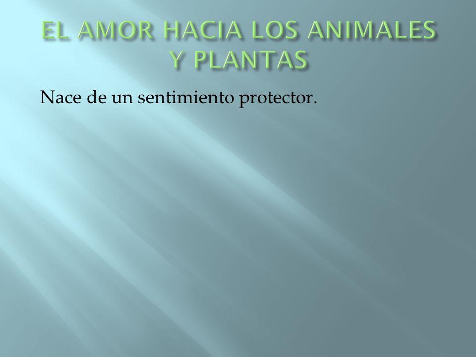 EL AMOR HACIA LOS ANIMALES Y PLANTAS