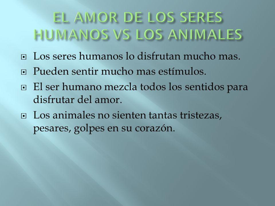 EL AMOR DE LOS SERES HUMANOS VS LOS ANIMALES