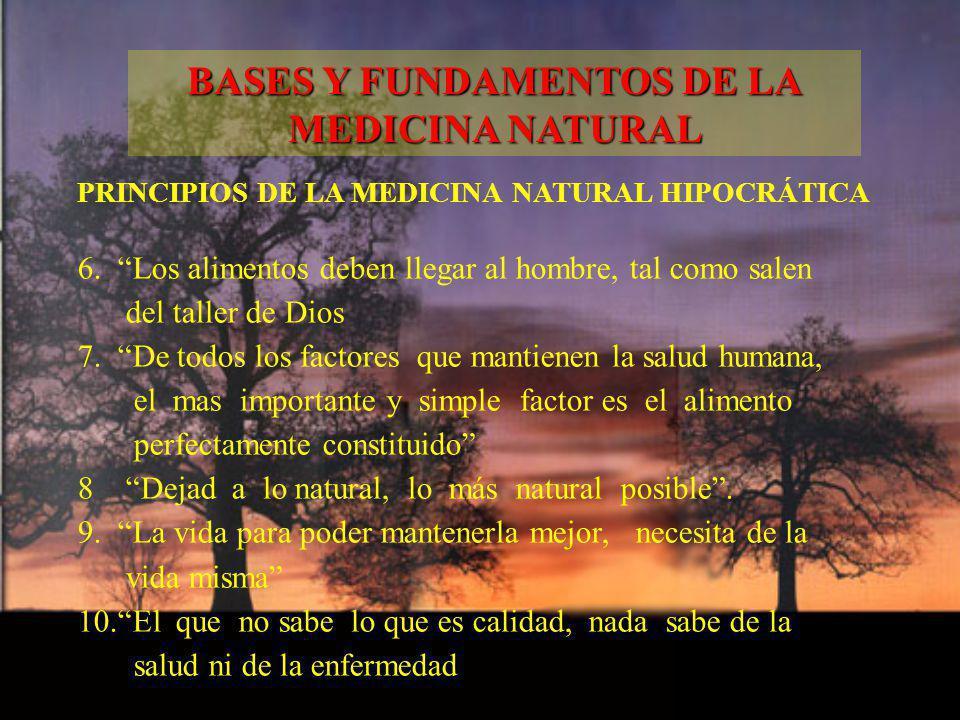 BASES Y FUNDAMENTOS DE LA