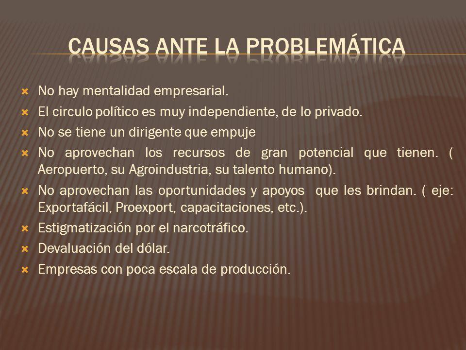 Causas Ante la Problemática