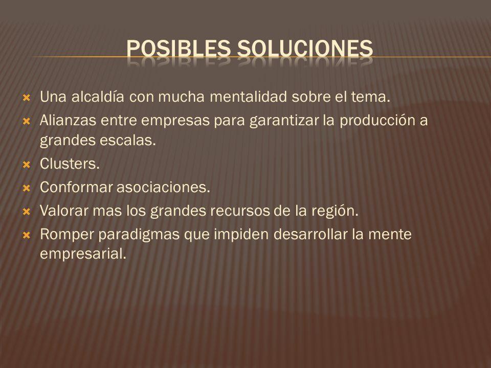 Posibles soluciones Una alcaldía con mucha mentalidad sobre el tema.