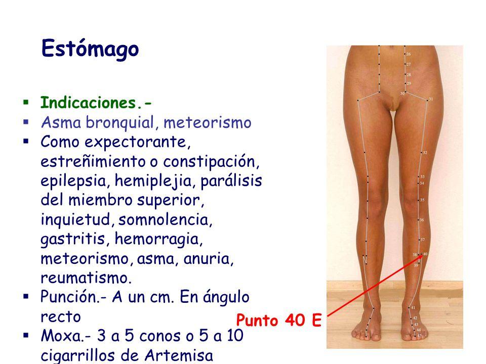 Estómago Indicaciones.- Asma bronquial, meteorismo