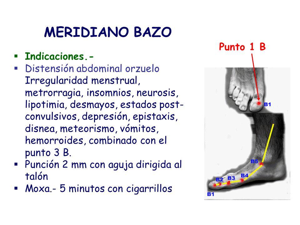 MERIDIANO BAZO Punto 1 B Indicaciones.-