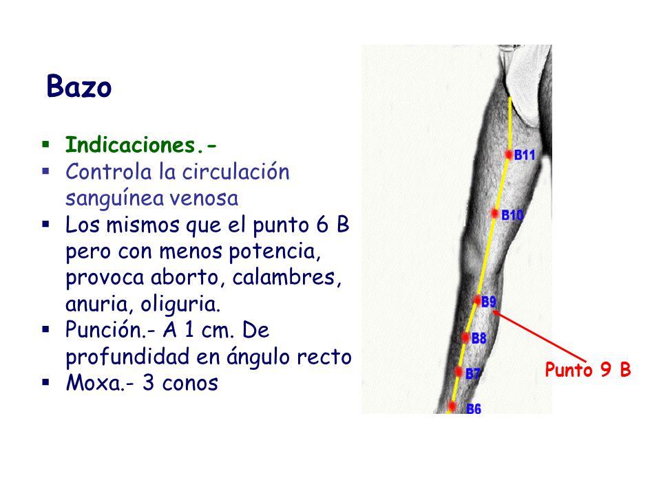 Bazo Indicaciones.- Controla la circulación sanguínea venosa