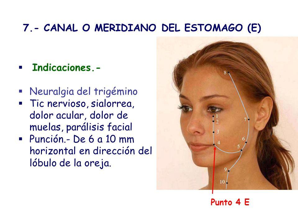 7.- CANAL O MERIDIANO DEL ESTOMAGO (E)