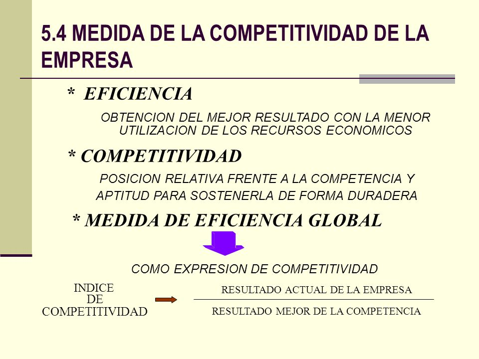* MEDIDA DE EFICIENCIA GLOBAL