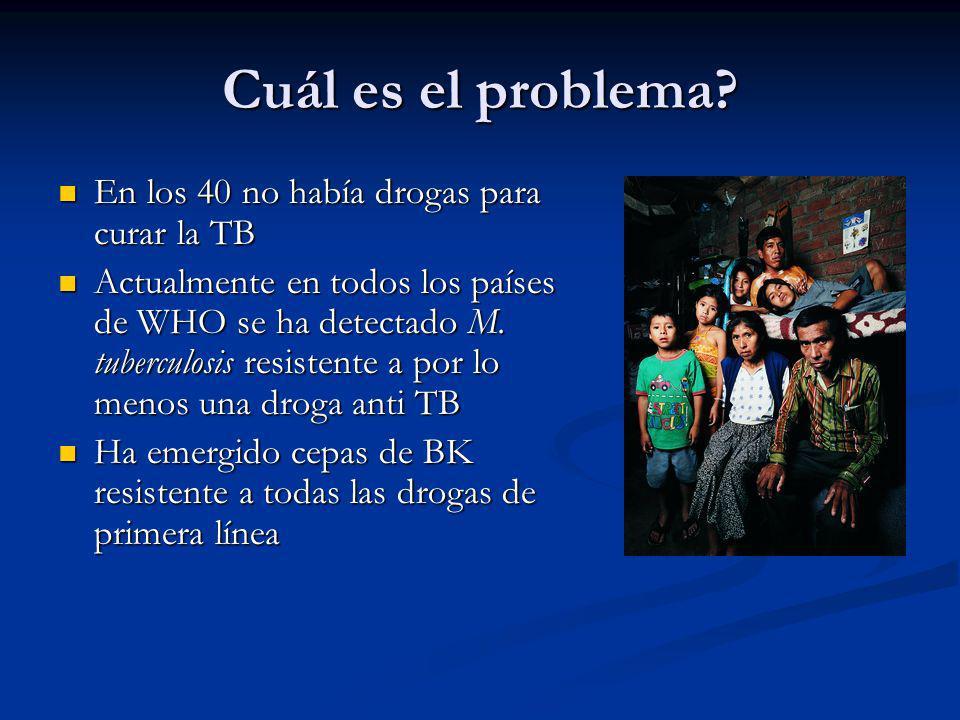 Cuál es el problema En los 40 no había drogas para curar la TB