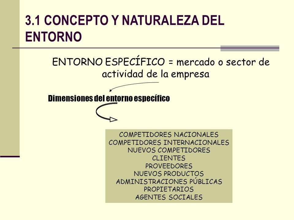 3.1 CONCEPTO Y NATURALEZA DEL ENTORNO
