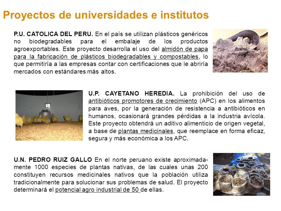 Proyectos de universidades e institutos