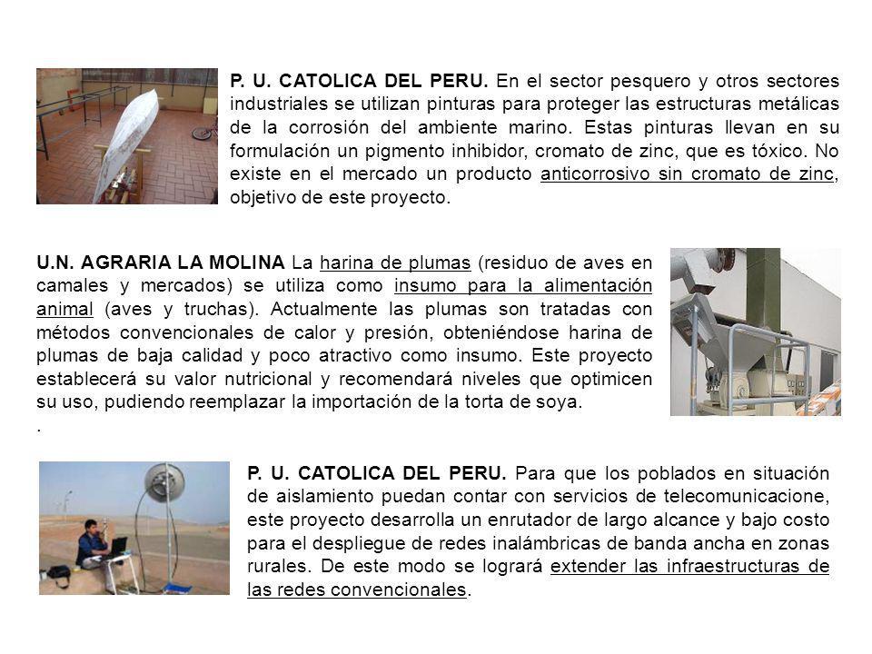 P. U. CATOLICA DEL PERU. En el sector pesquero y otros sectores industriales se utilizan pinturas para proteger las estructuras metálicas de la corrosión del ambiente marino. Estas pinturas llevan en su formulación un pigmento inhibidor, cromato de zinc, que es tóxico. No existe en el mercado un producto anticorrosivo sin cromato de zinc, objetivo de este proyecto.