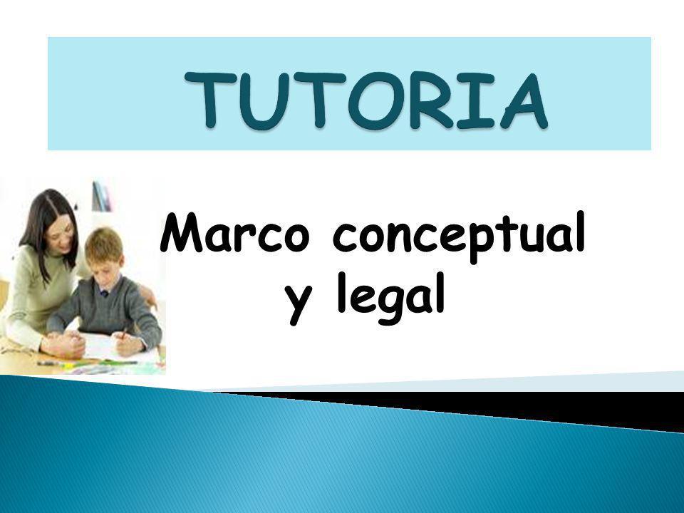 Marco conceptual y legal