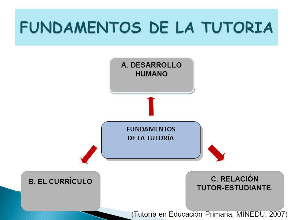 FUNDAMENTOS DE LA TUTORIA
