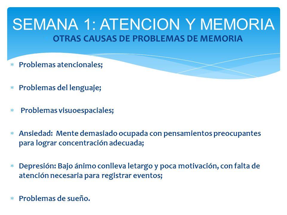 SEMANA 1: ATENCION Y MEMORIA