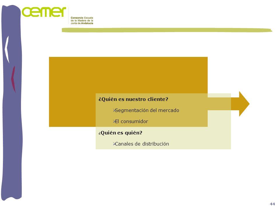 ¿Quién es nuestro cliente Segmentación del mercado El consumidor