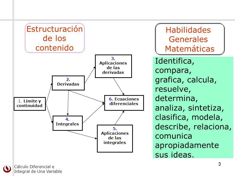 Estructuración Habilidades de los Generales contenido Matemáticas