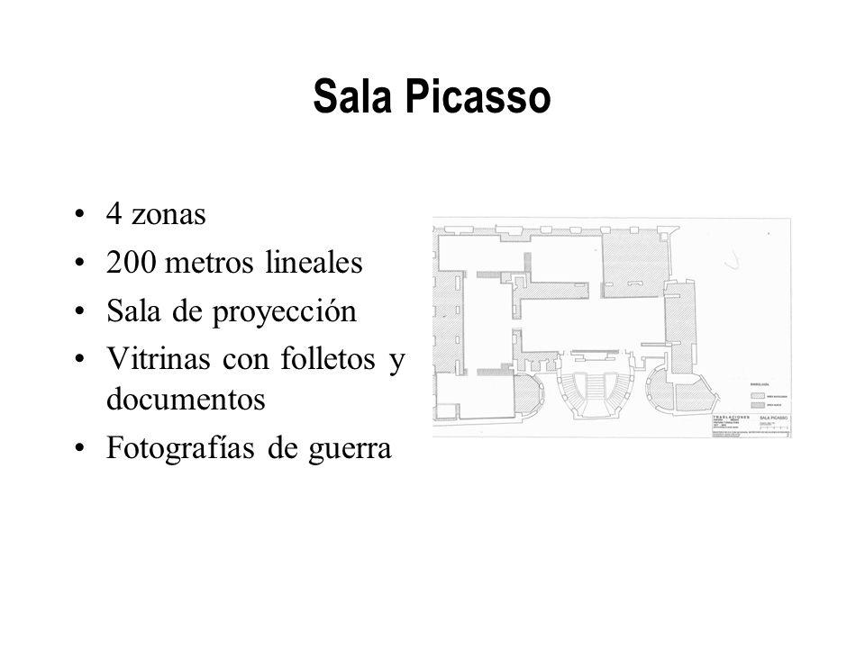 Sala Picasso 4 zonas 200 metros lineales Sala de proyección