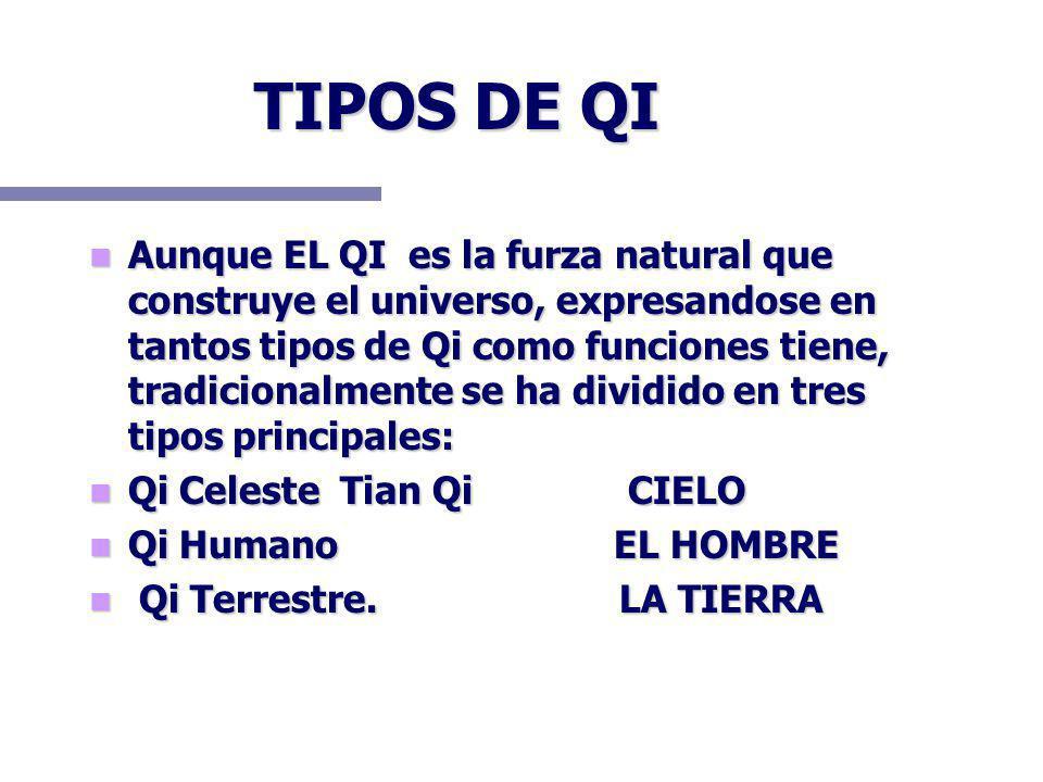 TIPOS DE QI