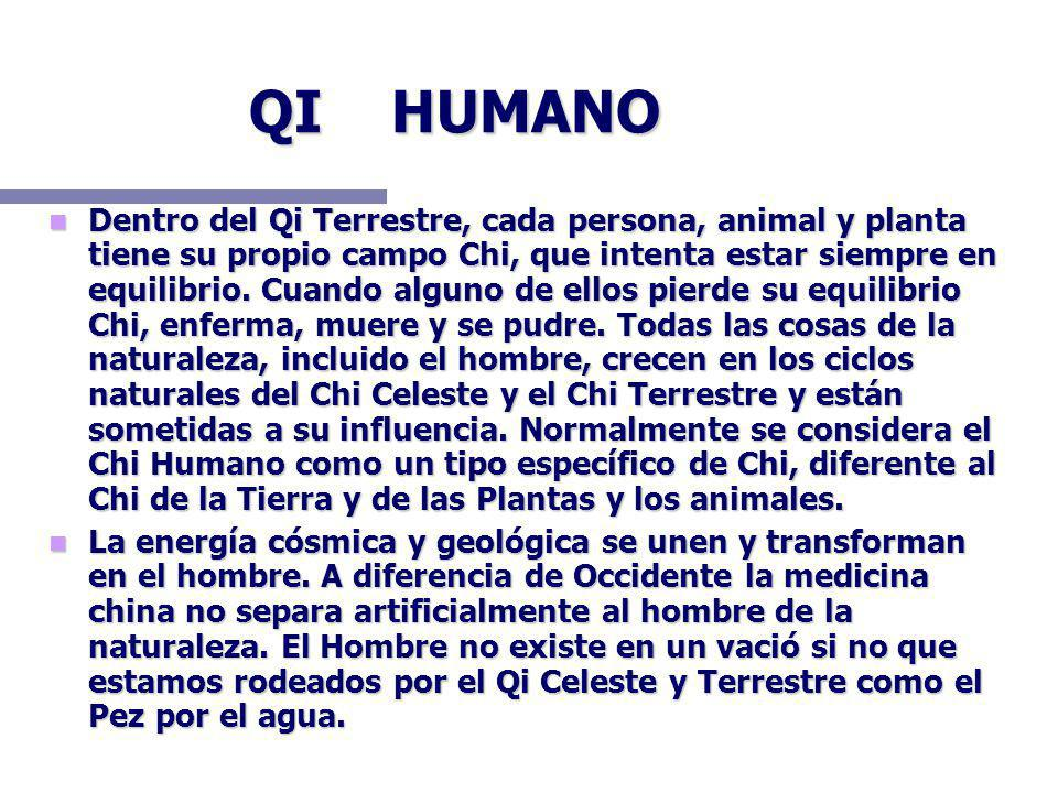 QI HUMANO