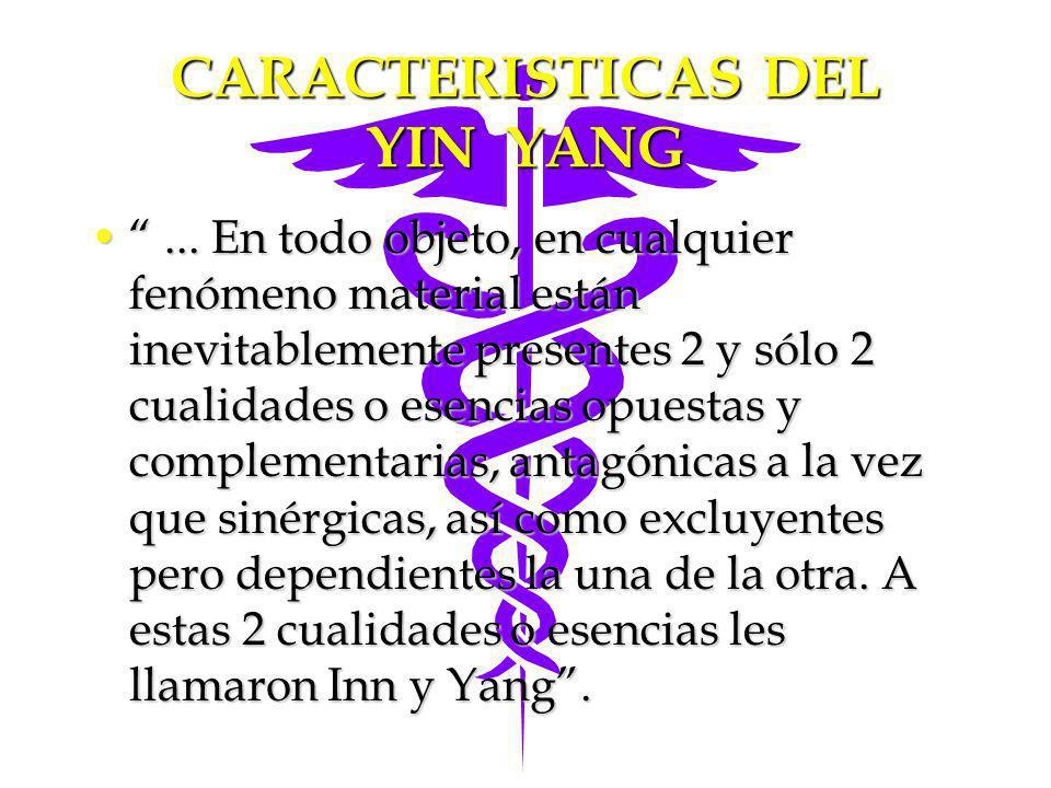 CARACTERISTICAS DEL YIN YANG
