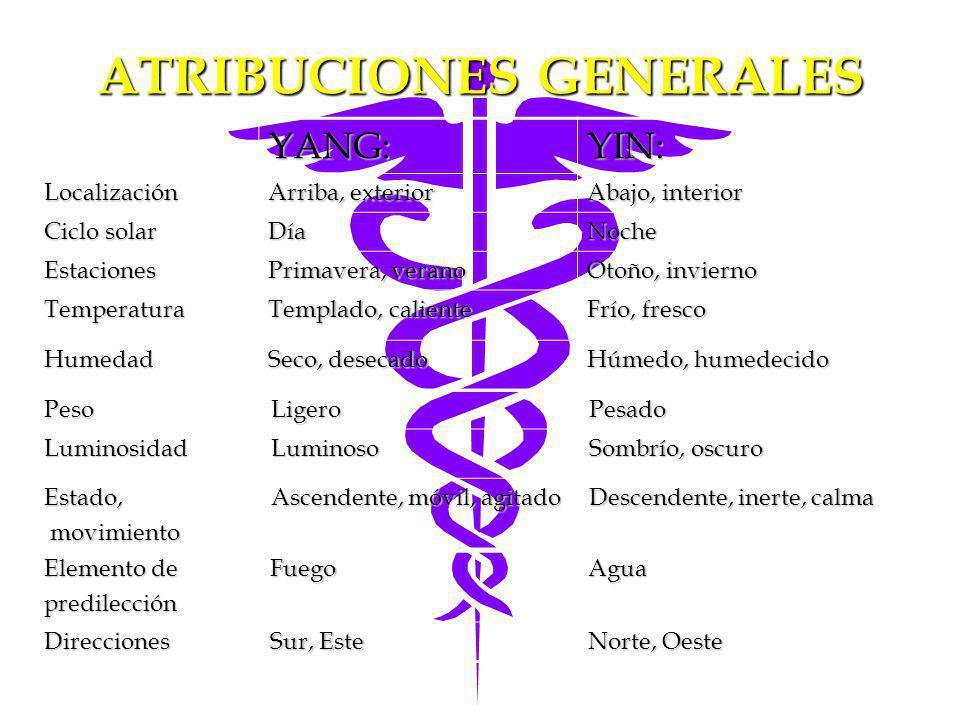 ATRIBUCIONES GENERALES