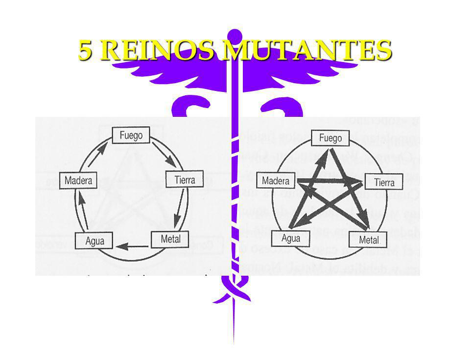5 REINOS MUTANTES