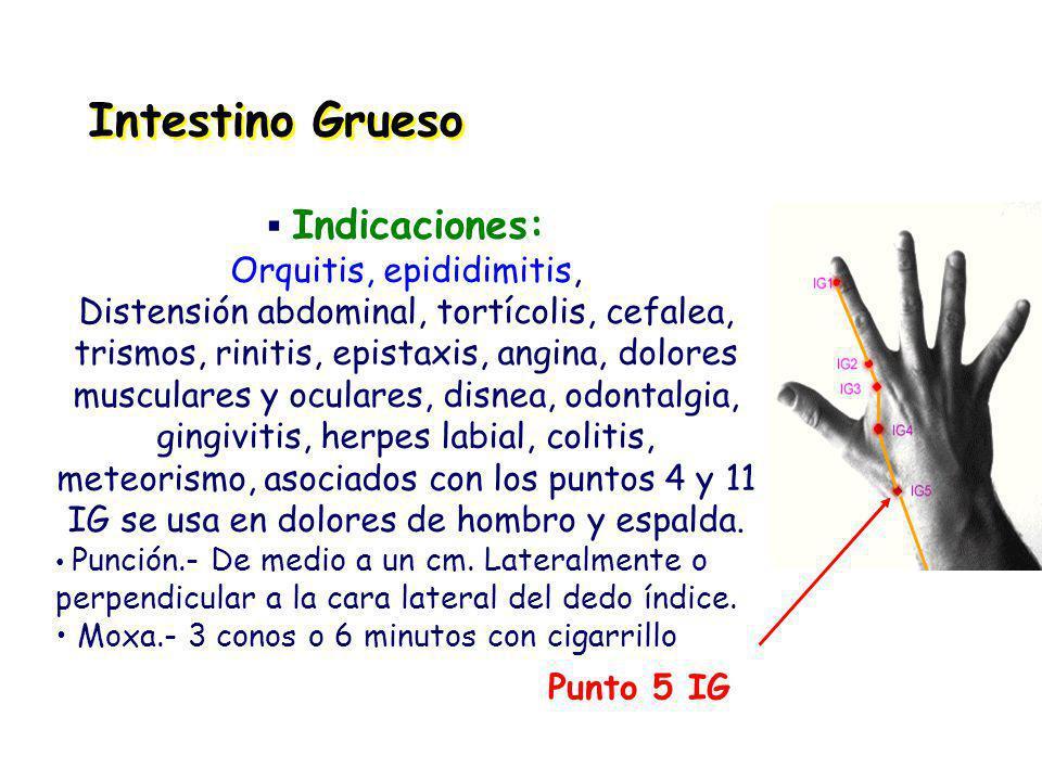 Orquitis, epididimitis,