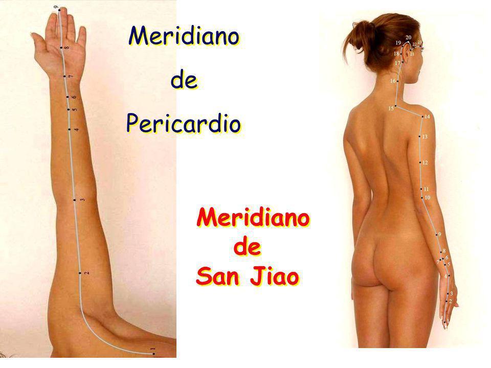Meridiano de Pericardio Meridiano de San Jiao