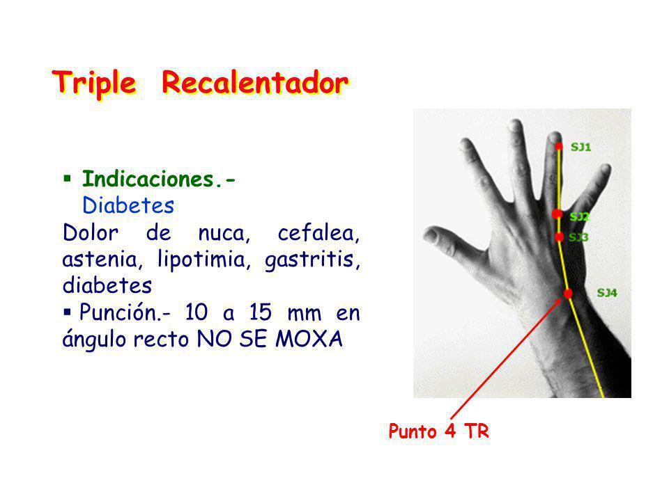 Triple Recalentador Indicaciones.- Diabetes