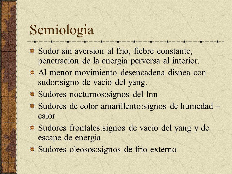 Semiologia Sudor sin aversion al frio, fiebre constante, penetracion de la energia perversa al interior.