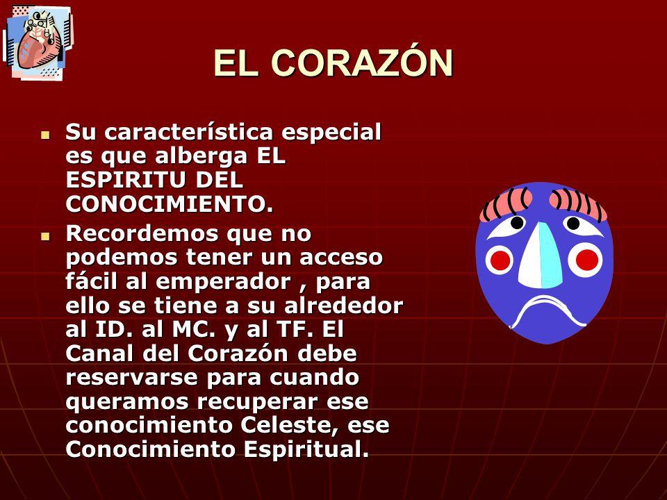 EL CORAZÓN Su característica especial es que alberga EL ESPIRITU DEL CONOCIMIENTO.