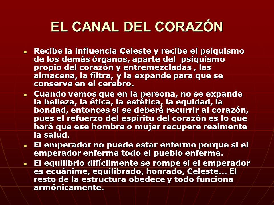 EL CANAL DEL CORAZÓN