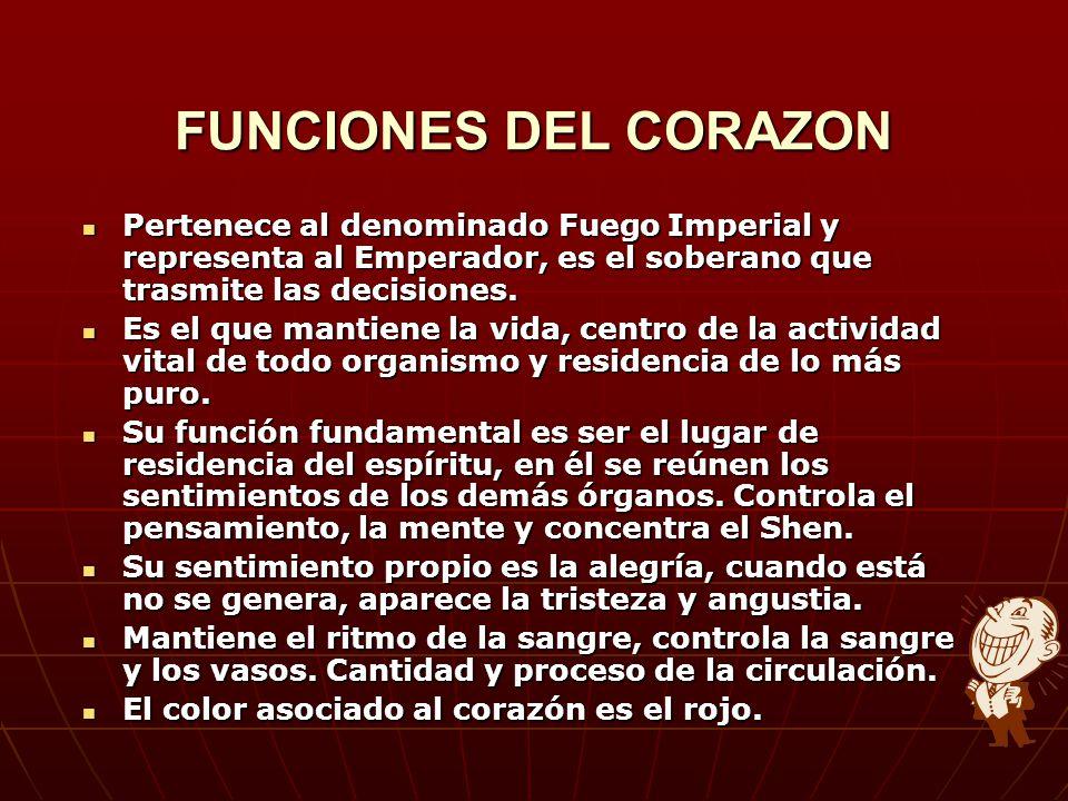 FUNCIONES DEL CORAZON Pertenece al denominado Fuego Imperial y representa al Emperador, es el soberano que trasmite las decisiones.
