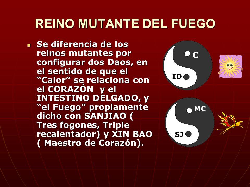 REINO MUTANTE DEL FUEGO