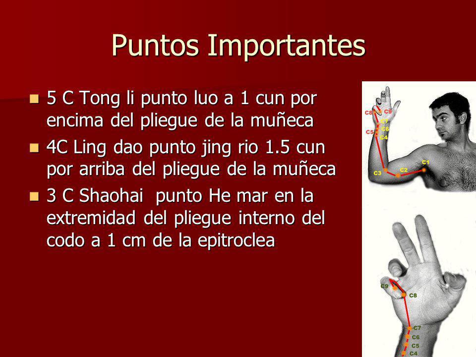 Puntos Importantes 5 C Tong li punto luo a 1 cun por encima del pliegue de la muñeca.