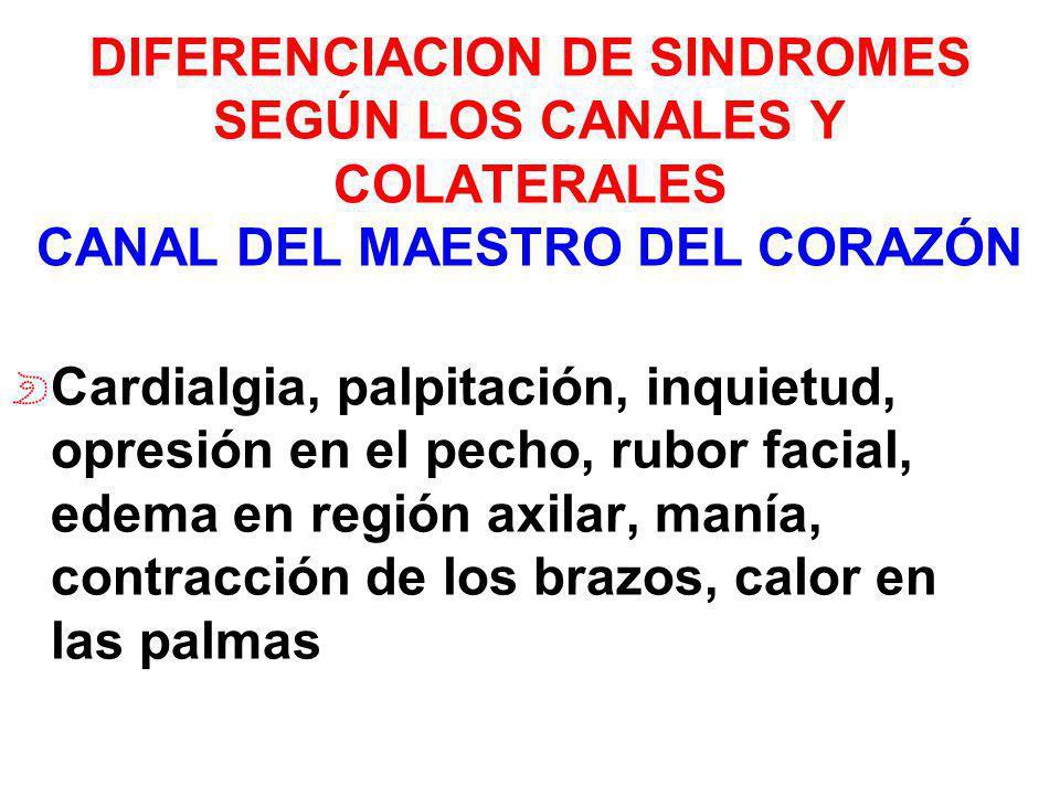 DIFERENCIACION DE SINDROMES SEGÚN LOS CANALES Y COLATERALES CANAL DEL MAESTRO DEL CORAZÓN