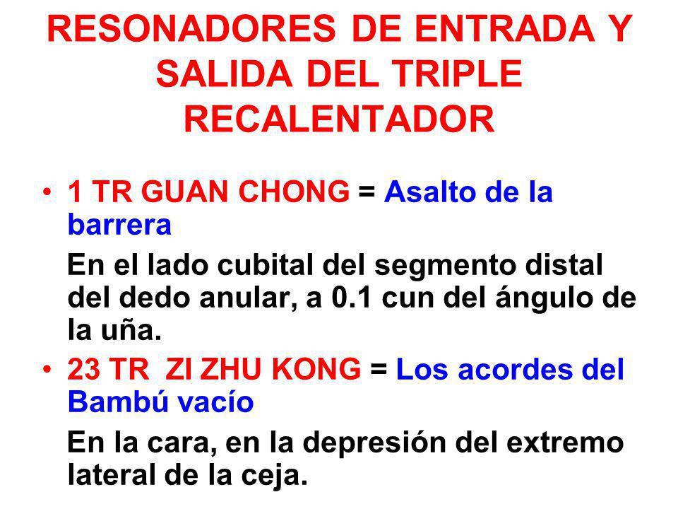 RESONADORES DE ENTRADA Y SALIDA DEL TRIPLE RECALENTADOR